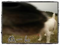 kn3_20121118180909.jpg