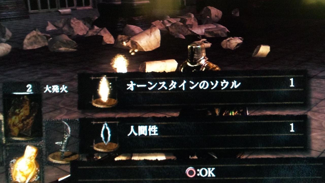 DSC_0496 (4)