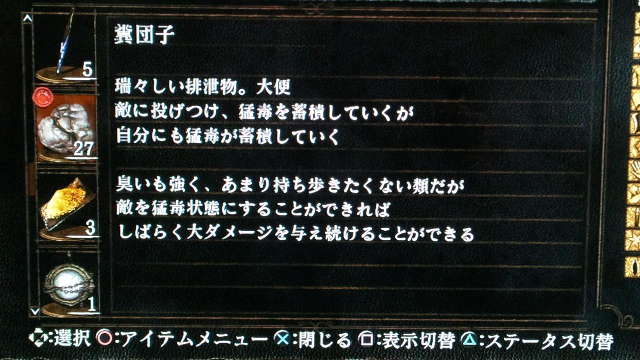 DSC_0493 (4)