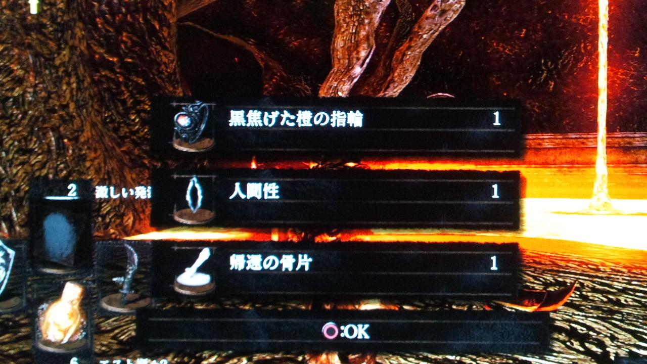 DSC_0502 (2)