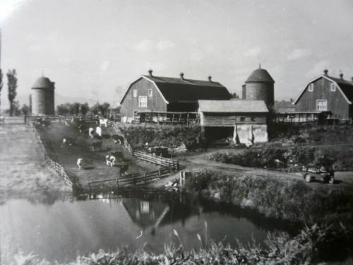馬場牧場 古写真