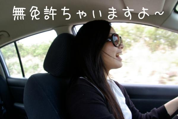drive20120528234621.jpg