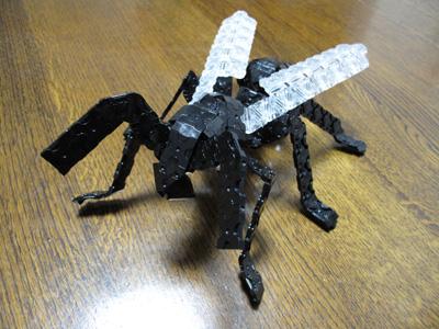 Ant-066bl.jpg