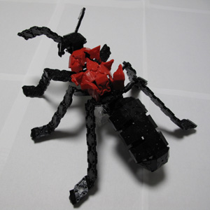 Ant-094bl.jpg