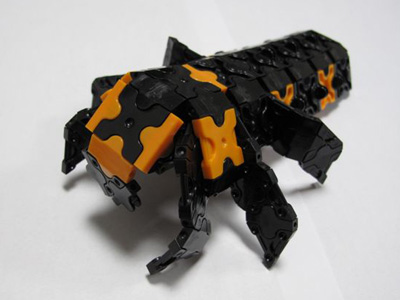 Ladybug-067bl.jpg