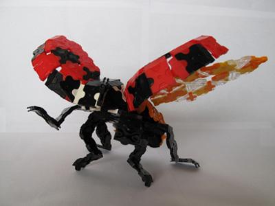 Ladybug-s033bl.jpg