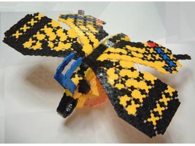Papillon-006bl.jpg