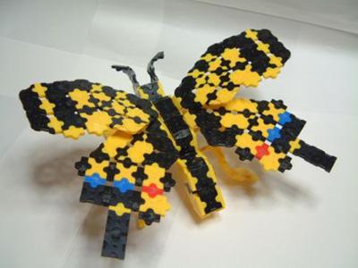 Papillon-049bl.jpg