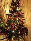 吉カリクリスマス4