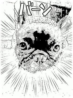 mangafu_20121208084400.jpg