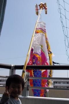こいのぼり2012