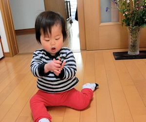 テントウ虫のおもちゃ (2)