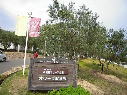 オリーブ公園 (2)