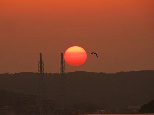 IMG_sunset500.jpg