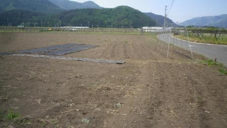 2012-5-22大豆