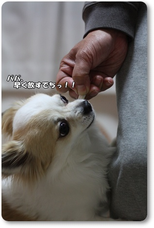 IMG_0286・2