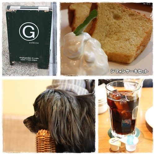 G Cafe②