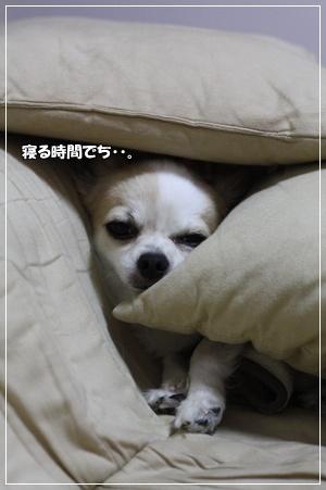 IMG_1428・2