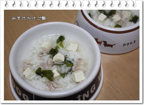 IMG_3581・2