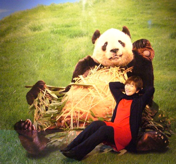 パンダと一緒