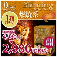 item_ht_burn_01fs_20120628182513.jpg