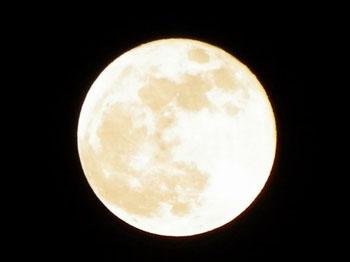女性のカラダと月の神秘的な関係
