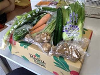 らでぃっしゅぼーやの有機野菜