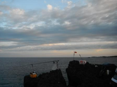 2012.09.08 GI 北向き