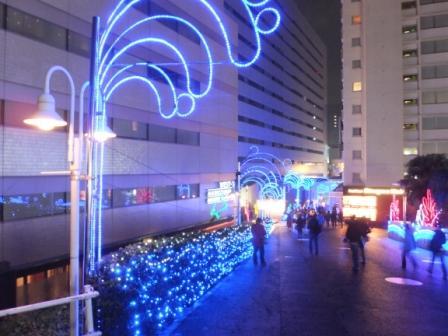 2012_12300138.jpg