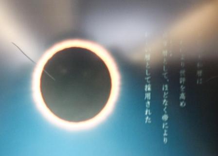 2013_01080035.jpg