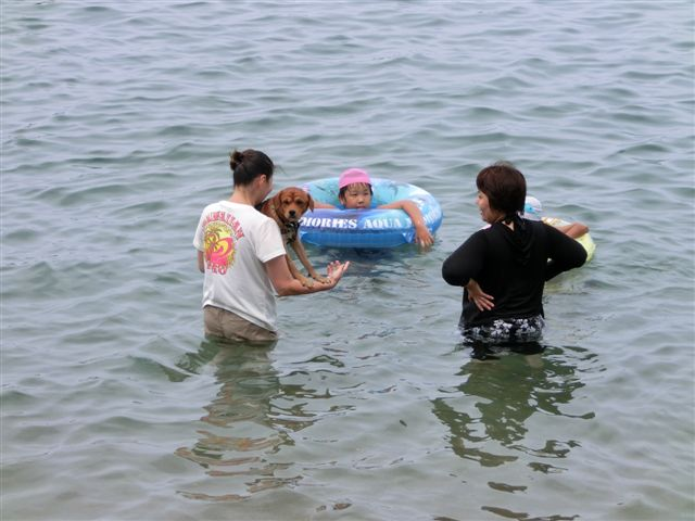 ラッキーの海4