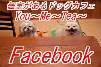 cafefacebook.jpg