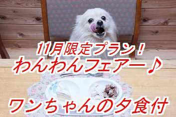 wanwanf_20121031124925.jpg