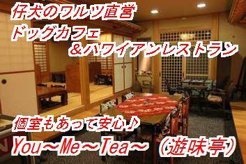 yumi353_4_20121029033732.jpg