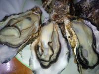 牡蠣調理写真2