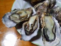 寄島牡蠣蒸し焼き写真