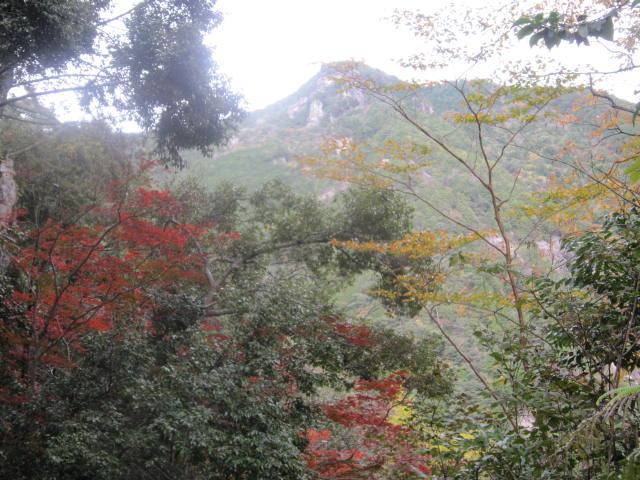20141116乳岩からの明神山IMG_1194