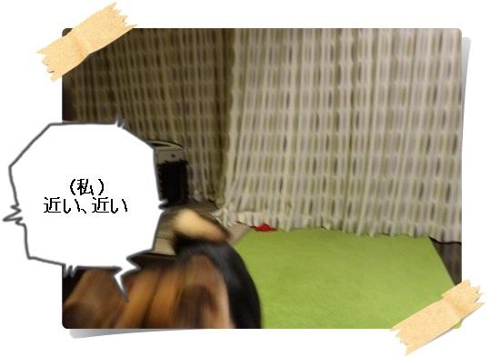 komaro20141123_13.jpg