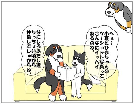 20130317-006.jpg