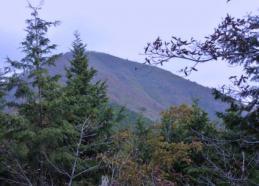 山頂稜線に入る 2山のピークを越える。