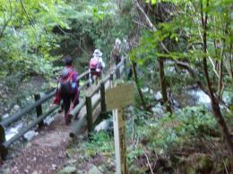 川音は次第に強くなり滝も見られる下山道の渡り橋