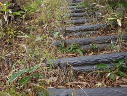 偽木の階段が急傾斜に延々と続く