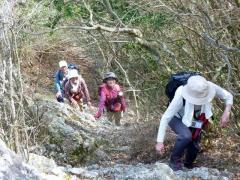 14時35分 嶮しい登山道は変化にとんで得居るいる。