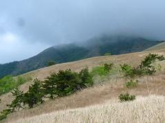 下蒜山 山頂は雨雲 霧が下りてきている・・・