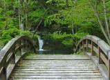 不動滝への橋は錦帯橋 縮小のようだ