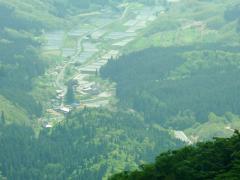毛無山の 山の家辺り 麓を眺望