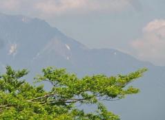 次第に視界が開けた白馬山への縦走路 大山の僅かな残雪