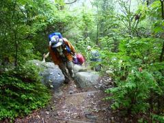 急登り 歩き方で学び実践 平素の鍛えが力強い