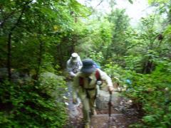 山頂へのコース 度々出て来る急登り 萩の塚古墳へ