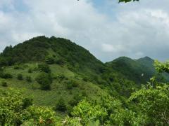 櫃ヶ山への稜線のコース